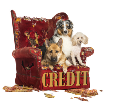 3 ways people destroy their credit and get bad credit.