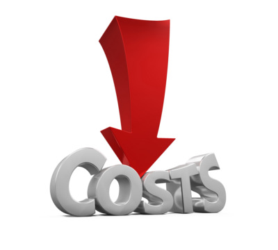 Find ways to reduce or cut costs to help you pay down your debt faster.